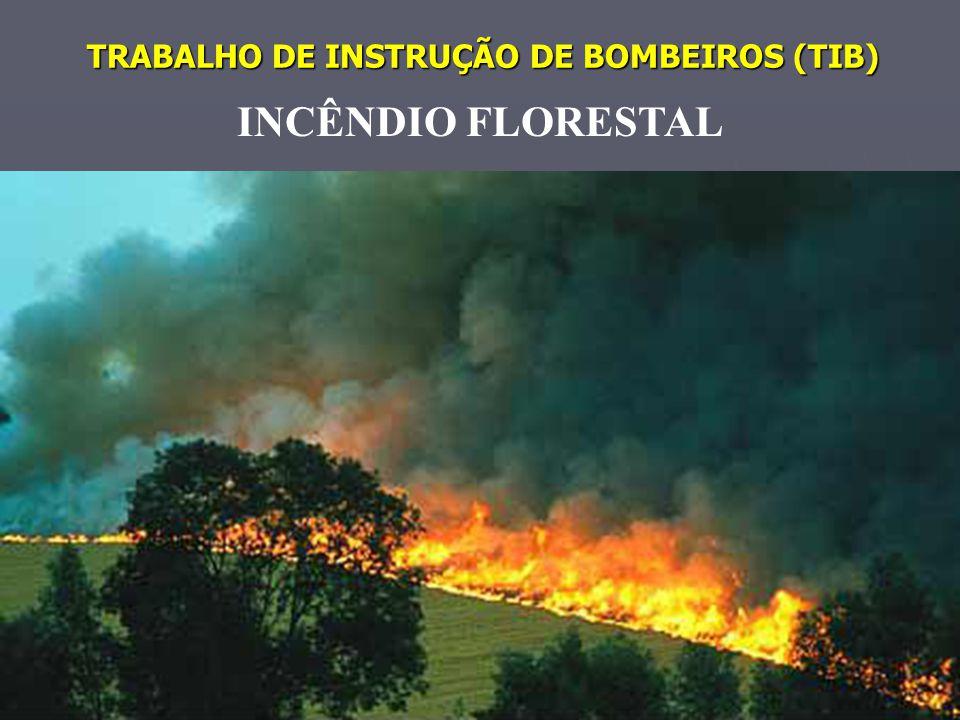 TRABALHO DE INSTRUÇÃO DE BOMBEIROS (TIB) INCÊNDIO FLORESTAL