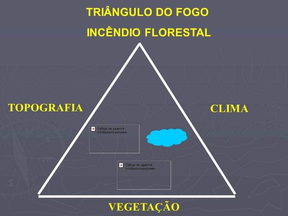 TRIÂNGULO DO FOGO INCÊNDIO FLORESTAL CLIMA TOPOGRAFIA VEGETAÇÃO