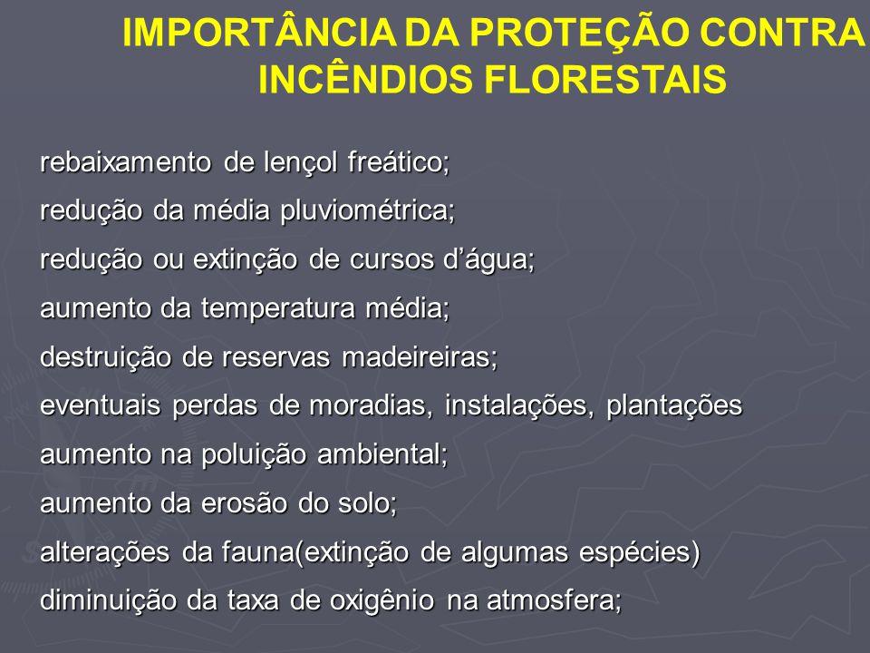 IMPORTÂNCIA DA PROTEÇÃO CONTRA INCÊNDIOS FLORESTAIS rebaixamento de lençol freático; redução da média pluviométrica; redução ou extinção de cursos dág