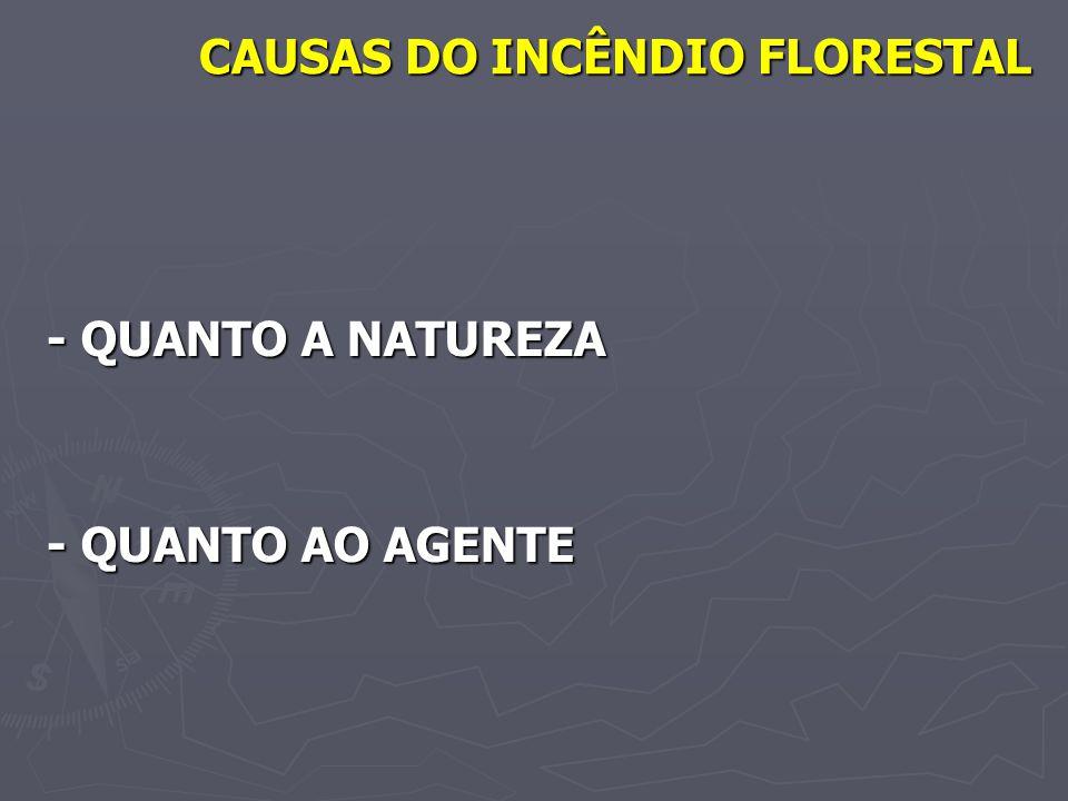 CAUSAS DO INCÊNDIO FLORESTAL - QUANTO A NATUREZA - QUANTO AO AGENTE