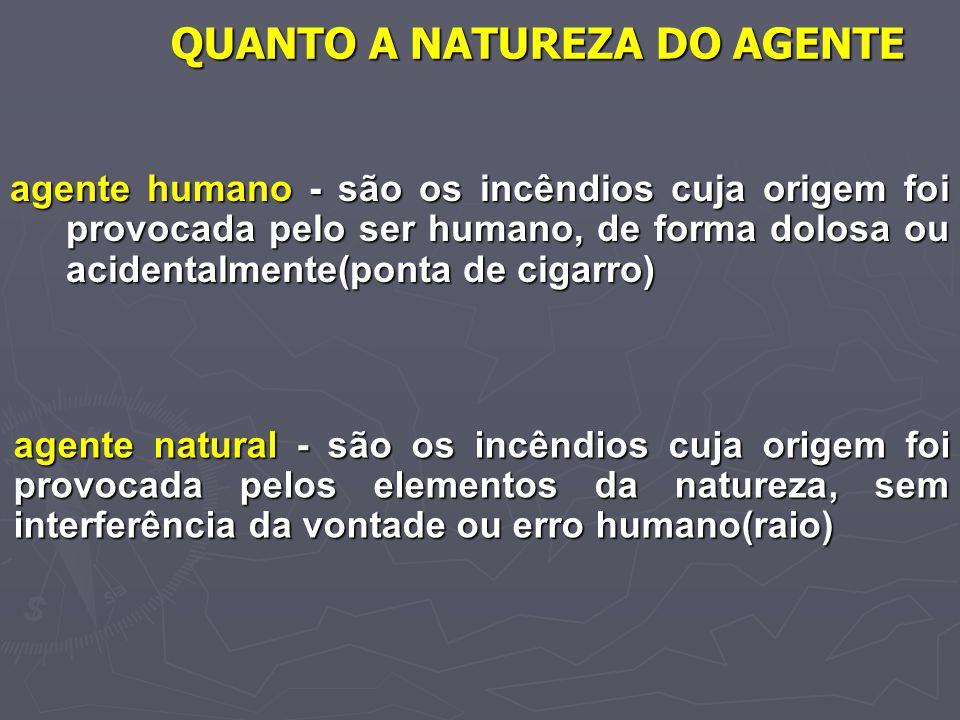 QUANTO A NATUREZA DO AGENTE agente humano - são os incêndios cuja origem foi provocada pelo ser humano, de forma dolosa ou acidentalmente(ponta de cig