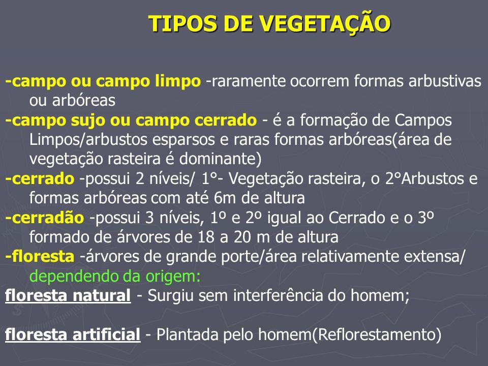 TIPOS DE VEGETAÇÃO -campo ou campo limpo -raramente ocorrem formas arbustivas ou arbóreas -campo sujo ou campo cerrado - é a formação de Campos Limpos