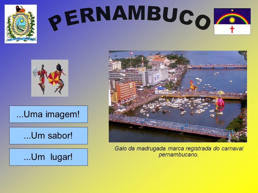 ...Uma imagem!...Um lugar!...Um sabor! Galo da madrugada marca registrada do carnaval pernambucano.