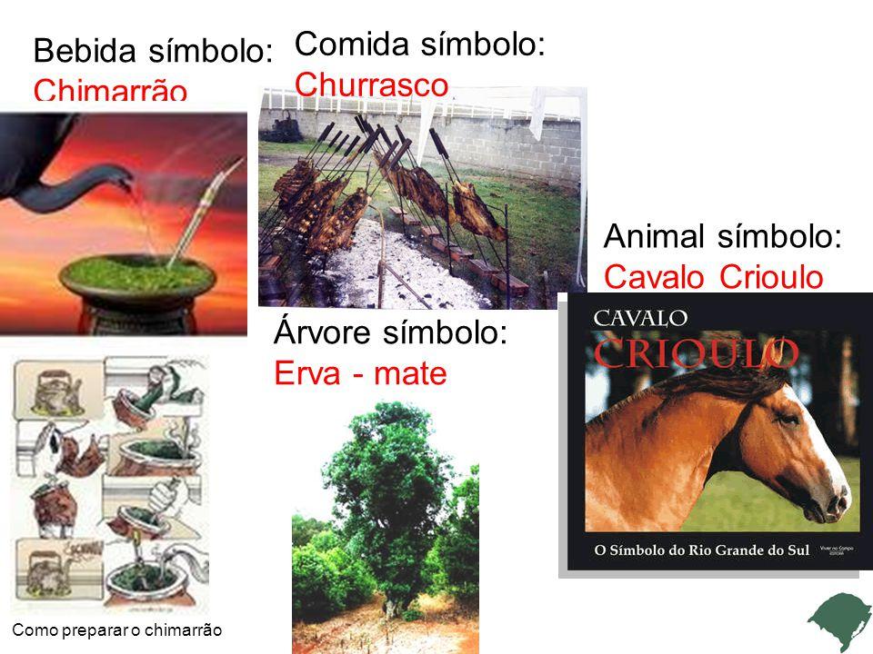 Bebida símbolo: Chimarrão Como preparar o chimarrão Comida símbolo: Churrasco Animal símbolo: Cavalo Crioulo Árvore símbolo: Erva - mate