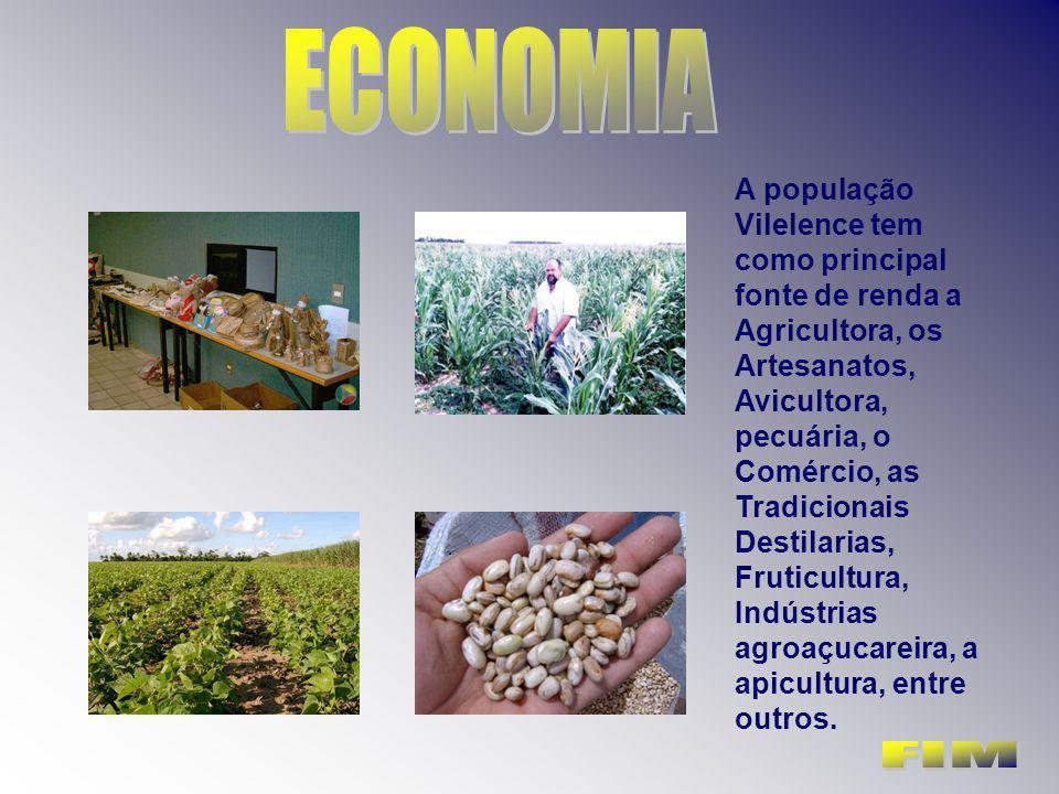 A população Vilelence tem como principal fonte de renda a Agricultora, os Artesanatos, Avicultora, pecuária, o Comércio, as Tradicionais Destilarias,