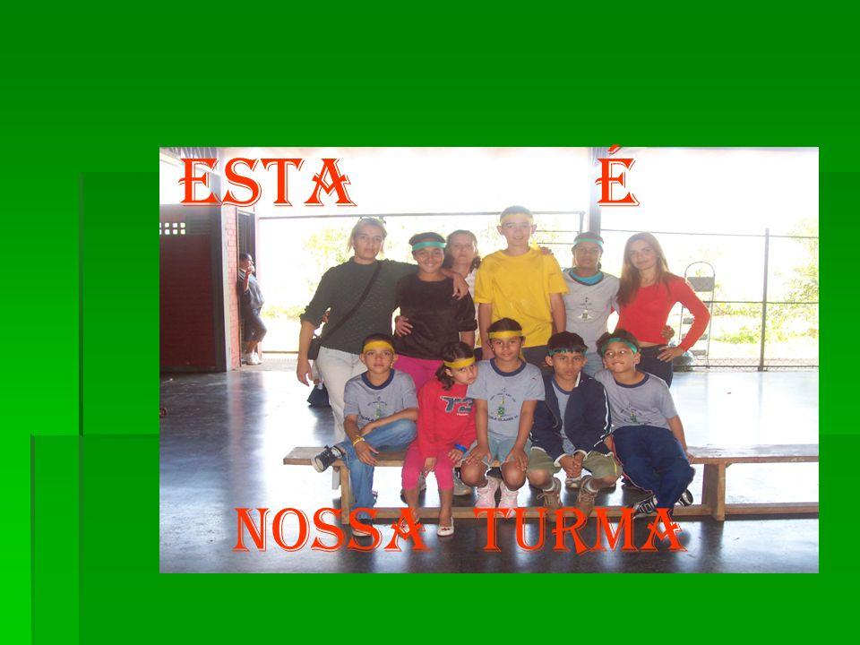 A Escola Classe 15 de Ceilândia A Escola Classe 15 de Ceilândia Foi fundada em 1978 Foi fundada em 1978 Atualmente atende ao ensino regular,ao ensino