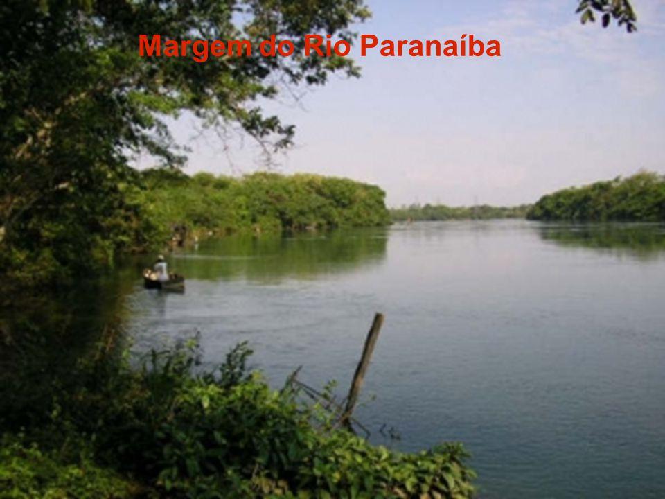 Margem do Rio Paranaíba