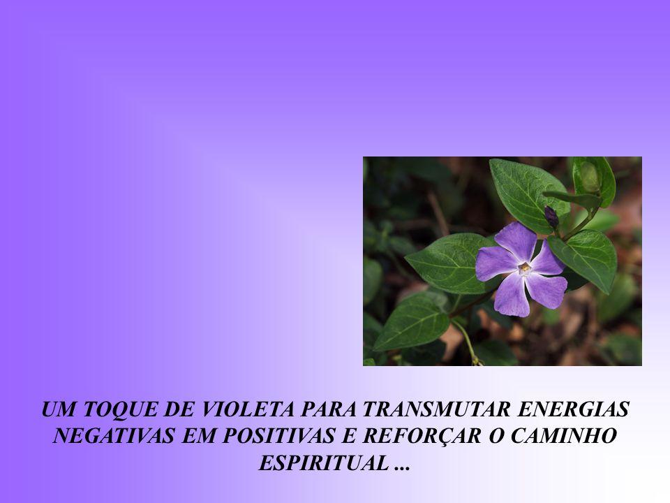 UM TOQUE DE VIOLETA PARA TRANSMUTAR ENERGIAS NEGATIVAS EM POSITIVAS E REFORÇAR O CAMINHO ESPIRITUAL...