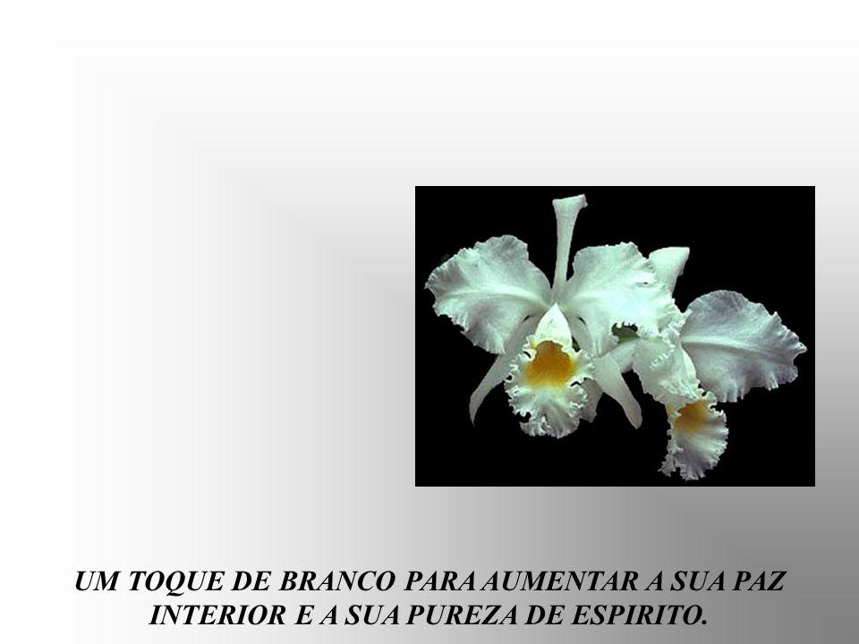 UM TOQUE DE BRANCO PARA AUMENTAR A SUA PAZ INTERIOR E A SUA PUREZA DE ESPIRITO.