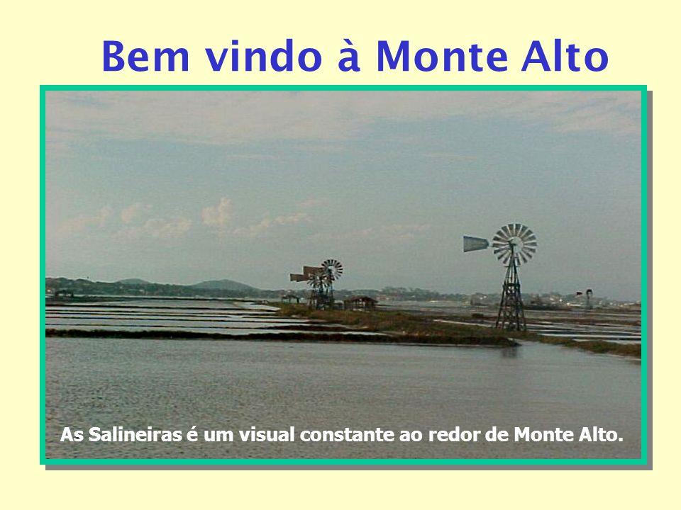 Bem vindo à Monte Alto As Salineiras é um visual constante ao redor de Monte Alto.
