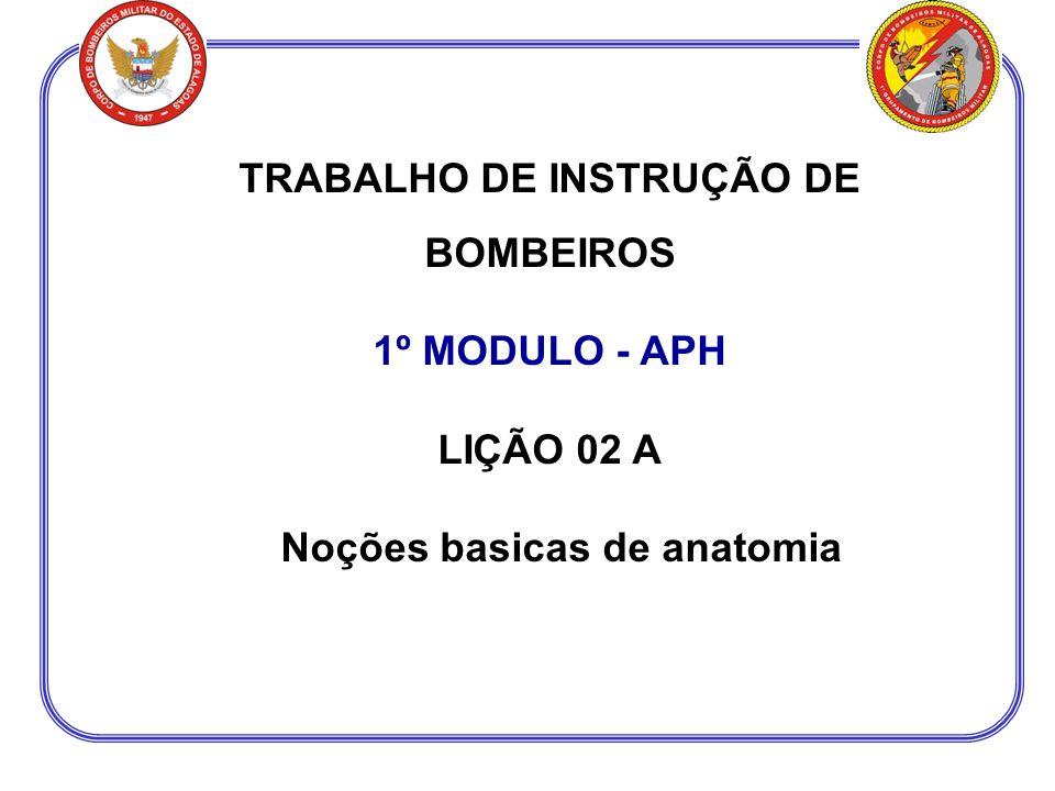 TRABALHO DE INSTRUÇÃO DE BOMBEIROS 1º MODULO - APH LIÇÃO 02 A Noções basicas de anatomia