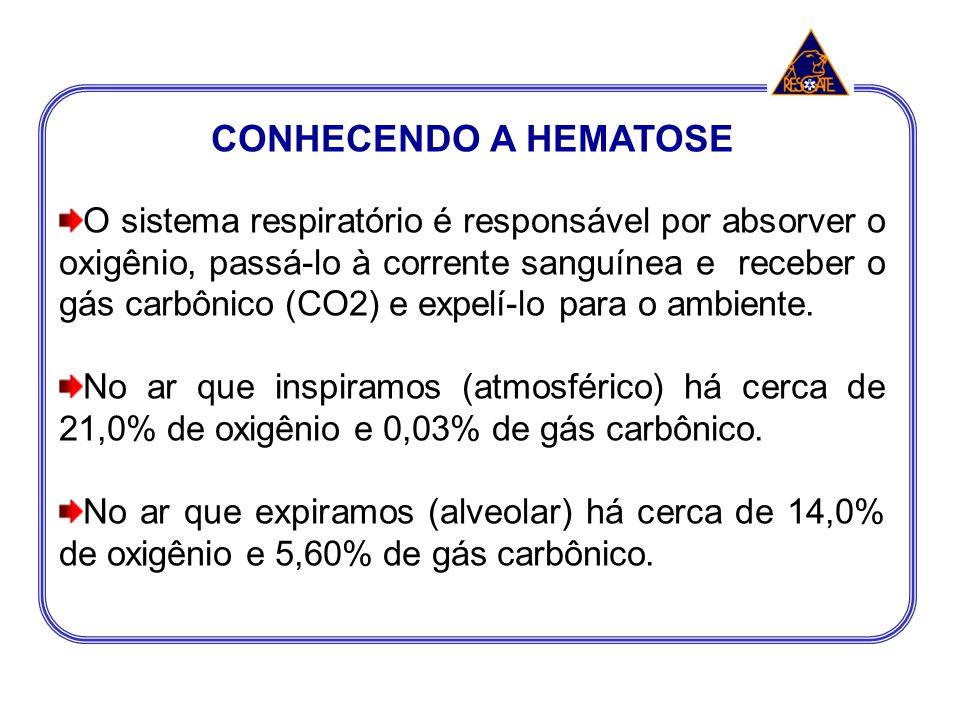 CONHECENDO A HEMATOSE O sistema respiratório é responsável por absorver o oxigênio, passá-lo à corrente sanguínea e receber o gás carbônico (CO2) e ex