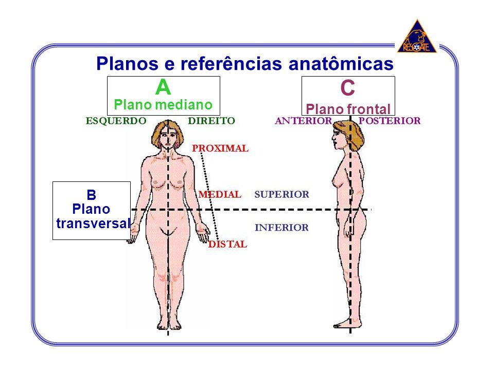 A Plano mediano C Plano frontal B Plano transversal Planos e referências anatômicas