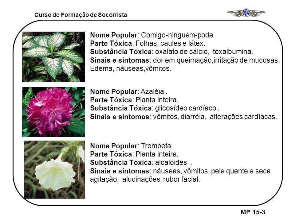 Curso de Formação de Socorrista MP 15-3 Nome Popular: Comigo-ninguém-pode. Parte Tóxica: Folhas, caules e látex. Substância Tóxica: oxalato de cálcio,