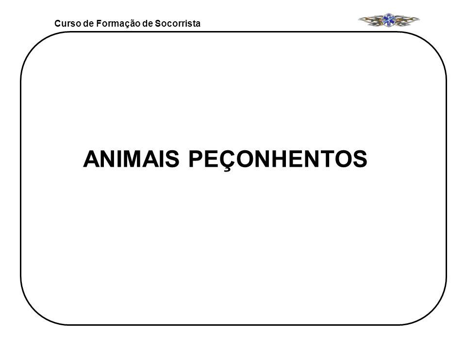 Curso de Formação de Socorrista ANIMAIS PEÇONHENTOS