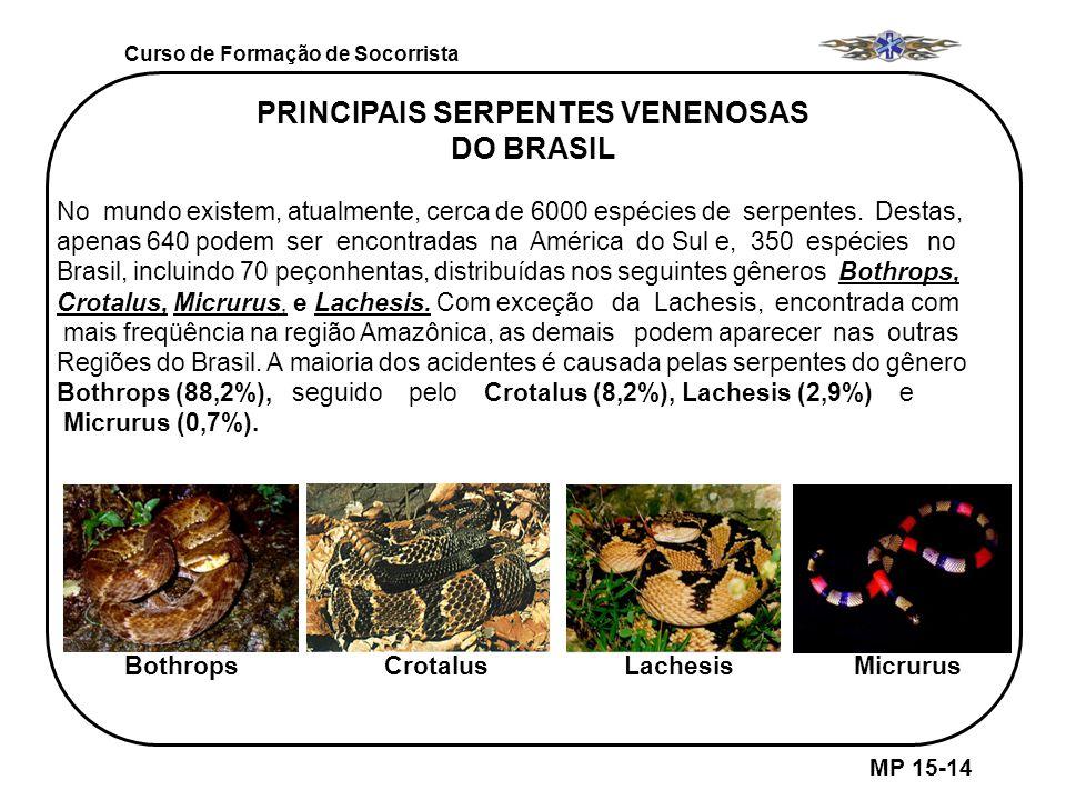 Curso de Formação de Socorrista MP 15-14 PRINCIPAIS SERPENTES VENENOSAS DO BRASIL No mundo existem, atualmente, cerca de 6000 espécies de serpentes. D