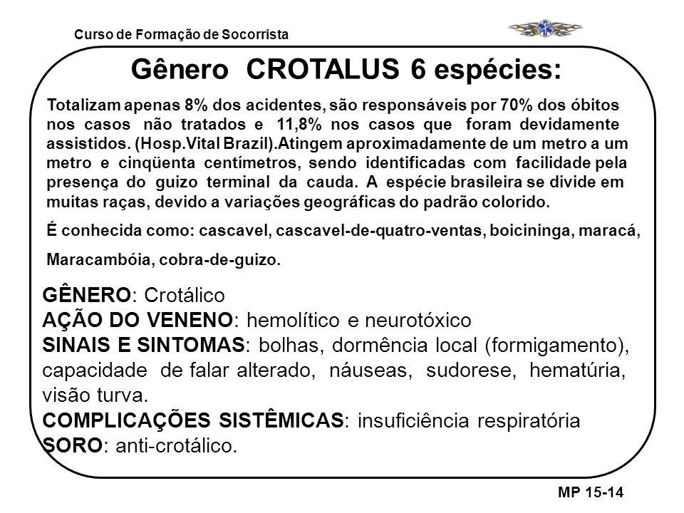 MP 15-14 Curso de Formação de Socorrista Gênero CROTALUS 6 espécies: Totalizam apenas 8% dos acidentes, são responsáveis por 70% dos óbitos nos casos