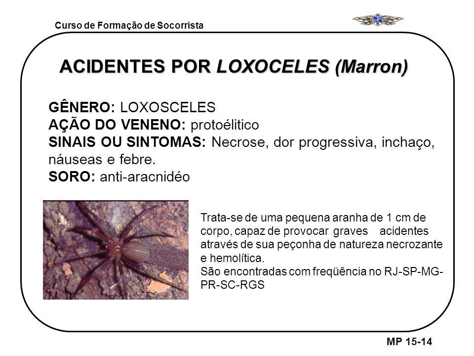 MP 15-14 Curso de Formação de Socorrista GÊNERO LOXOCELES ( Marrom) ACIDENTES POR LOXOCELES (Marron) GÊNERO: LOXOSCELES AÇÃO DO VENENO: protoélitico S