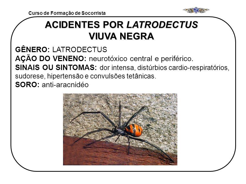 Curso de Formação de Socorrista ACIDENTES POR LATRODECTUS VIUVA NEGRA GÊNERO: LATRODECTUS AÇÃO DO VENENO: neurotóxico central e periférico. SINAIS OU
