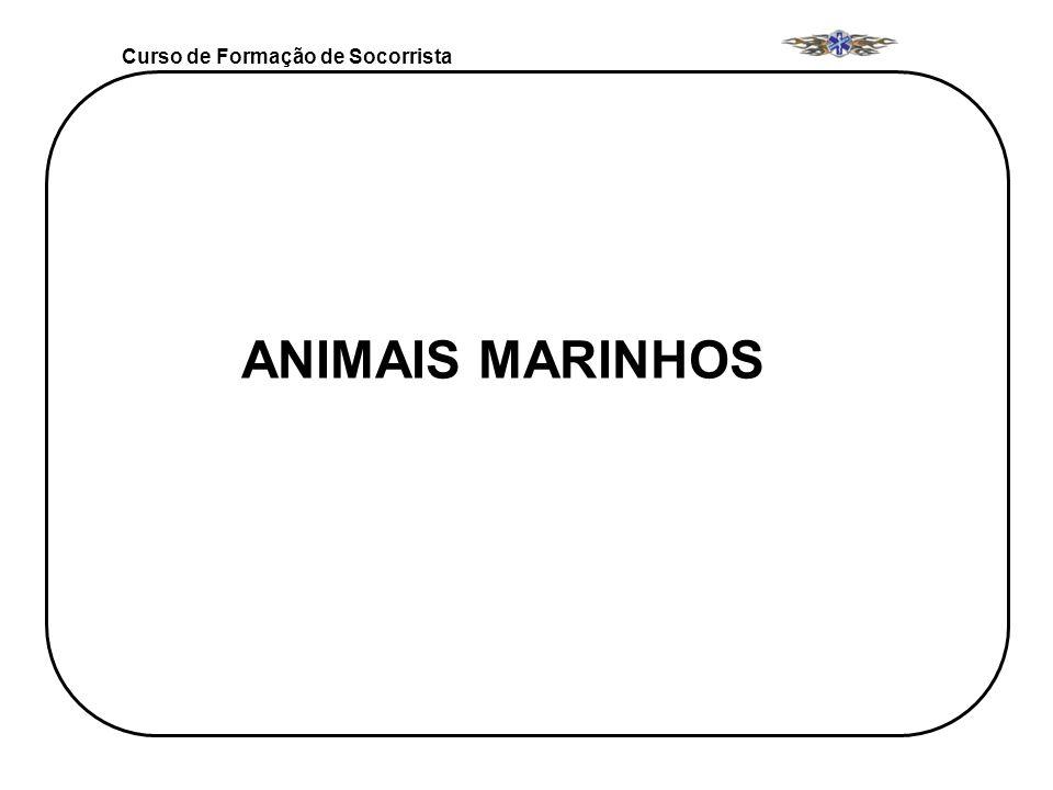 Curso de Formação de Socorrista ANIMAIS MARINHOS