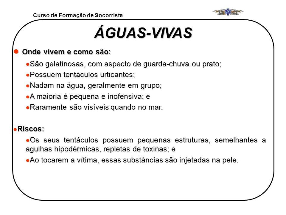 Curso de Formação de Socorrista ÁGUAS-VIVAS ÁGUAS-VIVAS Onde vivem e como são: Onde vivem e como são: São gelatinosas, com aspecto de guarda-chuva ou