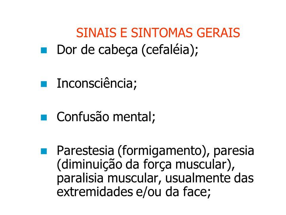 SINAIS E SINTOMAS GERAIS Dor de cabeça (cefaléia); Inconsciência; Confusão mental; Parestesia (formigamento), paresia (diminuição da força muscular), paralisia muscular, usualmente das extremidades e/ou da face;
