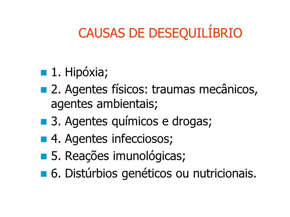 CAUSAS DE DESEQUILÍBRIO 1.Hipóxia; 2. Agentes físicos: traumas mecânicos, agentes ambientais; 3.