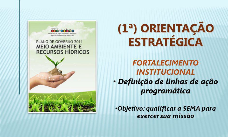 (1ª) ORIENTAÇÃO ESTRATÉGICA FORTALECIMENTO INSTITUCIONAL Definição de linhas de ação programática Objetivo: qualificar a SEMA para exercer sua missão