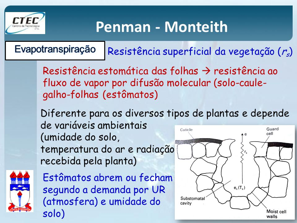 Penman - Monteith Resistência estomática das folhas resistência ao fluxo de vapor por difusão molecular (solo-caule- galho-folhas (estômatos) Resistên