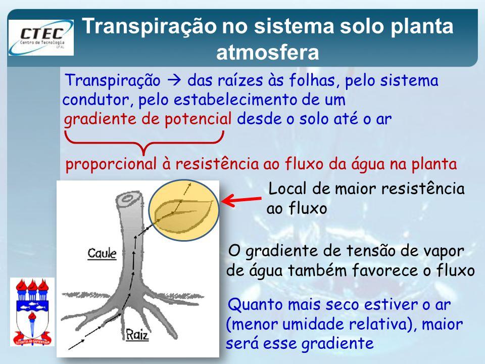 Transpiração das raízes às folhas, pelo sistema condutor, pelo estabelecimento de um gradiente de potencial desde o solo até o ar Transpiração no sist