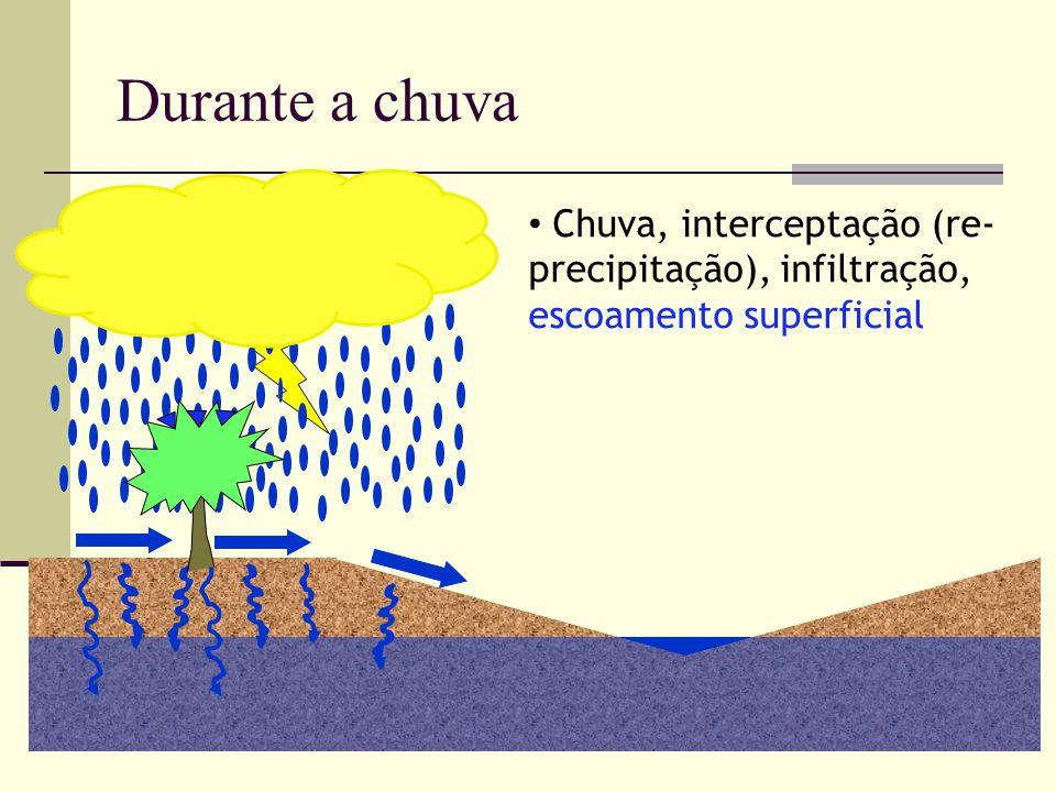 Chuva, interceptação (re- precipitação), infiltração, escoamento superficial Durante a chuva