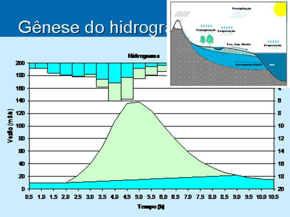 Gênese do hidrograma de saída