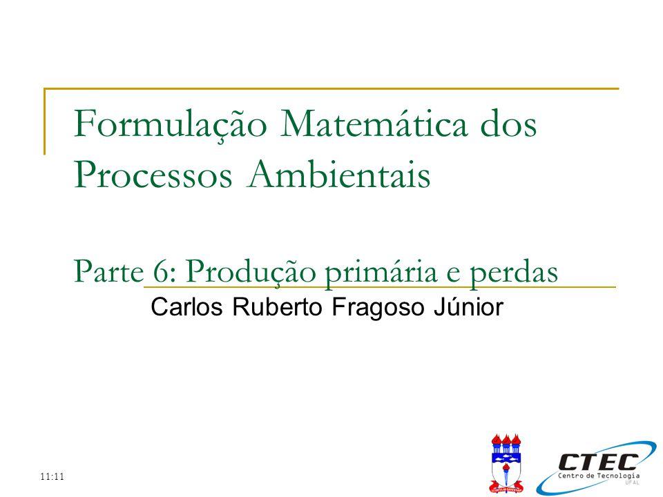 11:11 Sumário Revisão da aula anterior Importância da produção primária Os fatores limitantes A taxa de crescimento A produção primária Exercício prático Trabalho