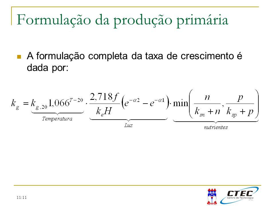 11:11 Formulação da produção primária A formulação completa da taxa de crescimento é dada por: