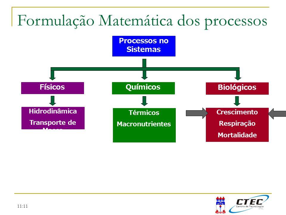 11:11 Formulação Matemática dos processos Processos no Sistemas Térmicos Macronutrientes Crescimento Respiração Mortalidade Hidrodinâmica Transporte d
