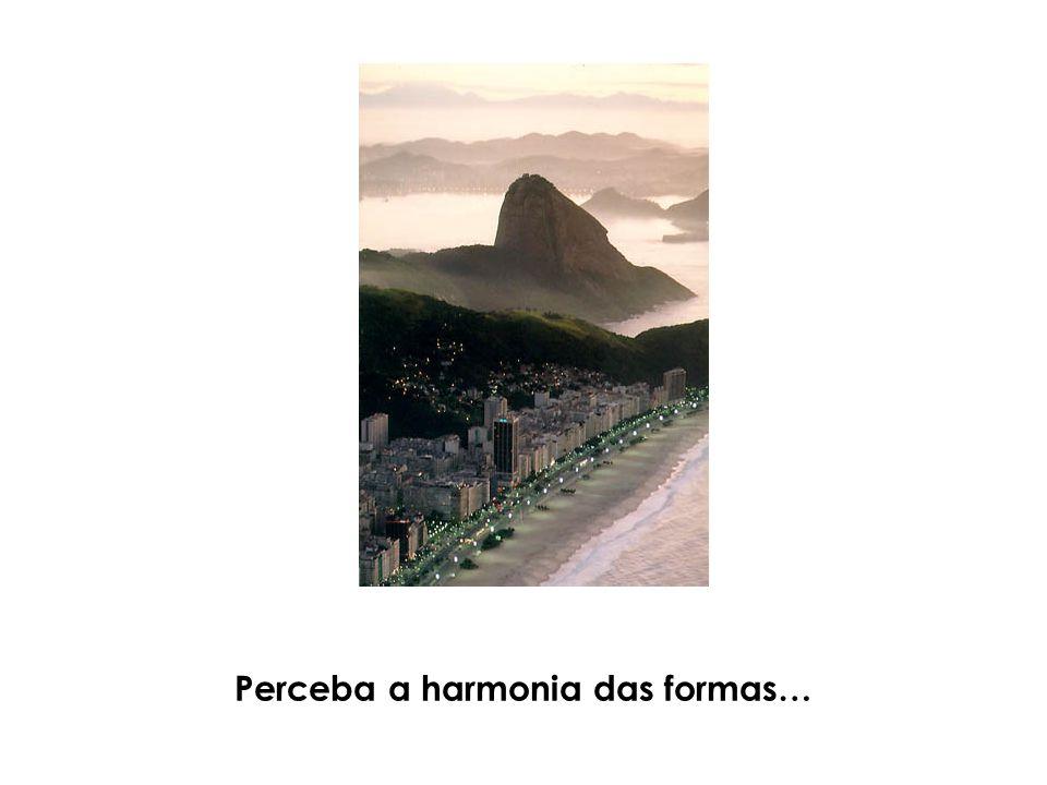 Perceba a harmonia das formas…