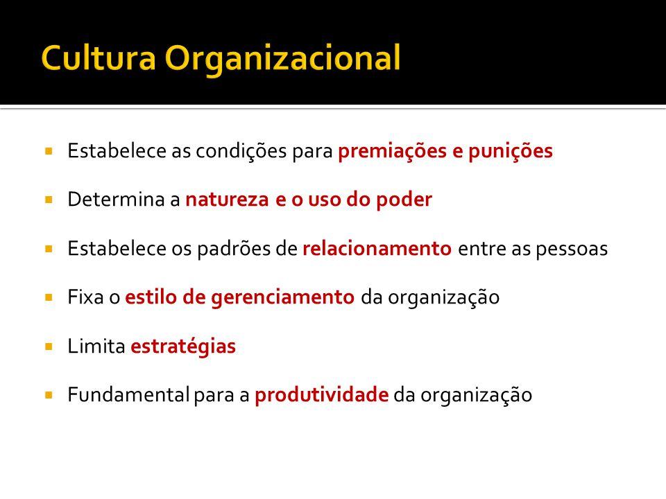 Estabelece as condições para premiações e punições Determina a natureza e o uso do poder Estabelece os padrões de relacionamento entre as pessoas Fixa o estilo de gerenciamento da organização Limita estratégias Fundamental para a produtividade da organização
