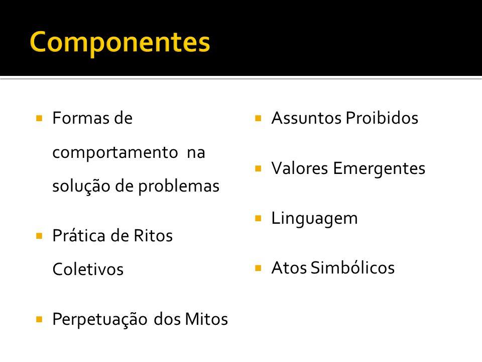 Formas de comportamento na solução de problemas Prática de Ritos Coletivos Perpetuação dos Mitos Assuntos Proibidos Valores Emergentes Linguagem Atos Simbólicos