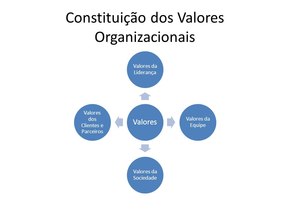 Constituição dos Valores Organizacionais Valores Valores da Liderança Valores da Equipe Valores da Sociedade Valores dos Clientes e Parceiros