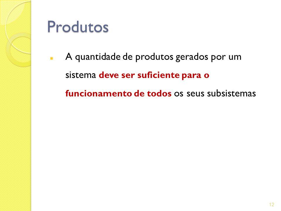 Produtos A quantidade de produtos gerados por um sistema deve ser suficiente para o funcionamento de todos os seus subsistemas 12