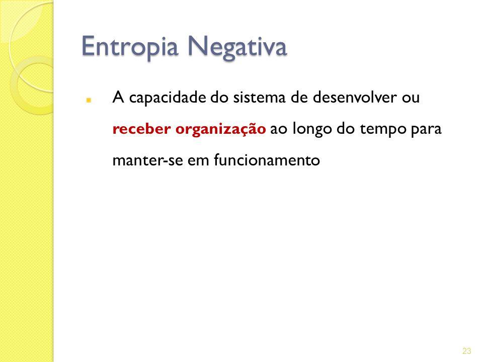 Entropia Negativa A capacidade do sistema de desenvolver ou receber organização ao longo do tempo para manter-se em funcionamento 23
