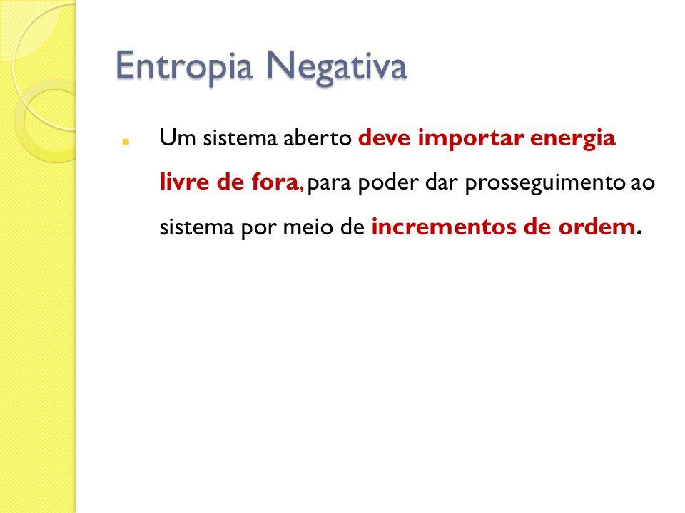 Entropia Negativa Um sistema aberto deve importar energia livre de fora, para poder dar prosseguimento ao sistema por meio de incrementos de ordem.