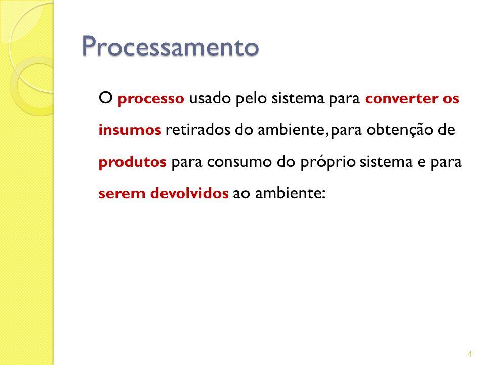 Processamento O processo usado pelo sistema para converter os insumos retirados do ambiente, para obtenção de produtos para consumo do próprio sistema