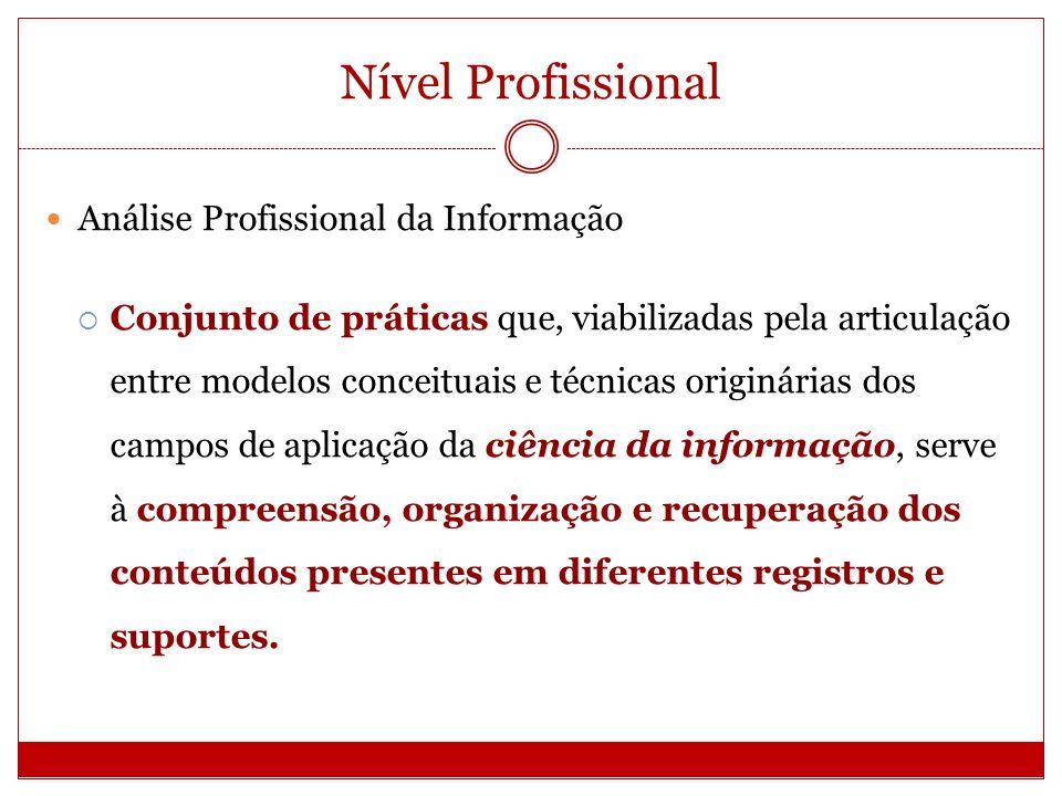 Nível Profissional Análise Profissional da Informação Conjunto de práticas que, viabilizadas pela articulação entre modelos conceituais e técnicas ori