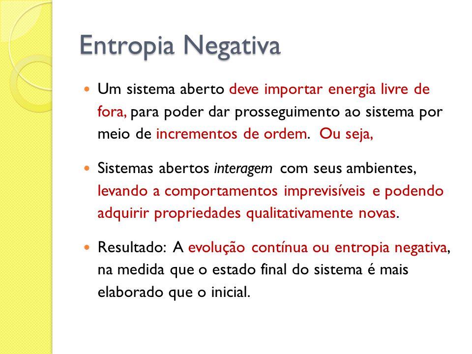 Entropia Negativa Um sistema aberto deve importar energia livre de fora, para poder dar prosseguimento ao sistema por meio de incrementos de ordem. Ou