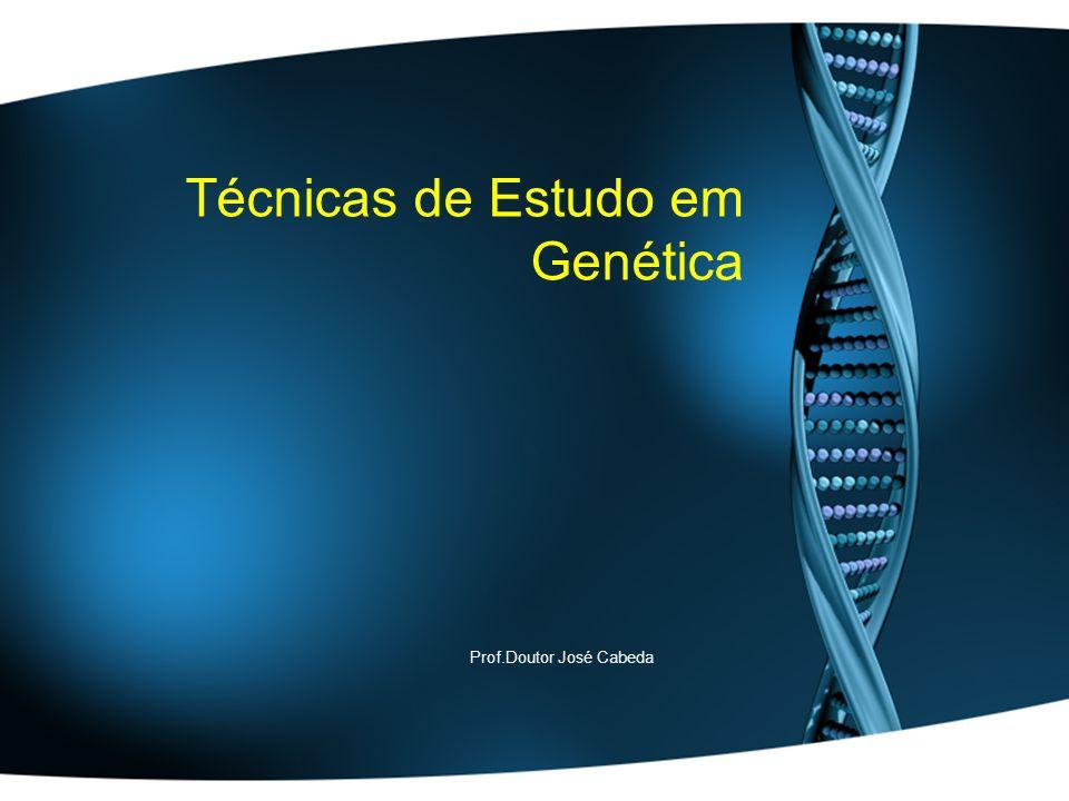 Técnicas de Estudo em Genética Prof.Doutor José Cabeda