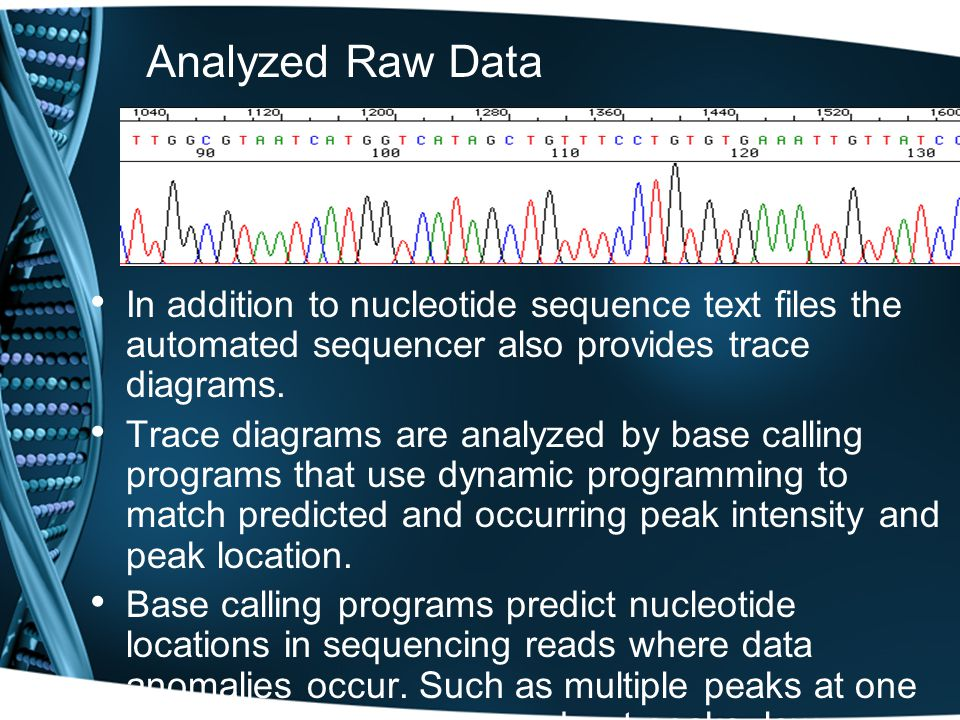 Raw Automated Sequencing Data A 5 lane example of raw automated sequencing data. Green:ddATP Red:ddTTP Yellow: ddGTP Blue:ddCTP Demo ABI Animação