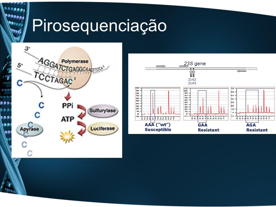 Equipamentos para sanger sequencing