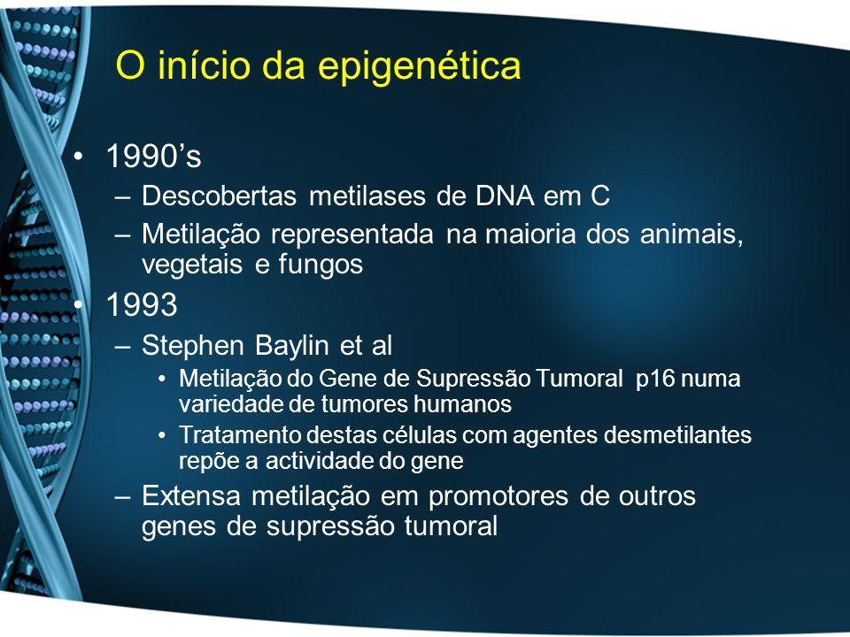 O início da epigenética 1990s –Descobertas metilases de DNA em C –Metilação representada na maioria dos animais, vegetais e fungos 1993 –Stephen Baylin et al Metilação do Gene de Supressão Tumoral p16 numa variedade de tumores humanos Tratamento destas células com agentes desmetilantes repõe a actividade do gene –Extensa metilação em promotores de outros genes de supressão tumoral