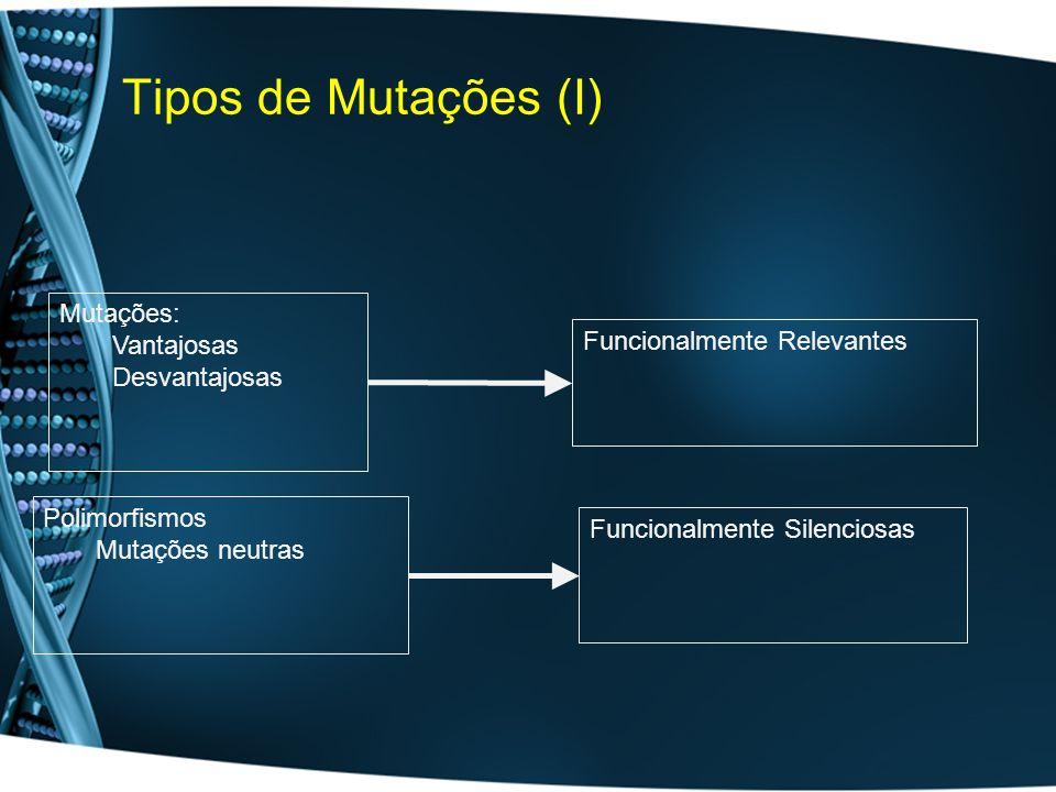Tipos de Mutações (I) Funcionalmente Silenciosas Polimorfismos Mutações neutras Mutações: Vantajosas Desvantajosas Funcionalmente Relevantes